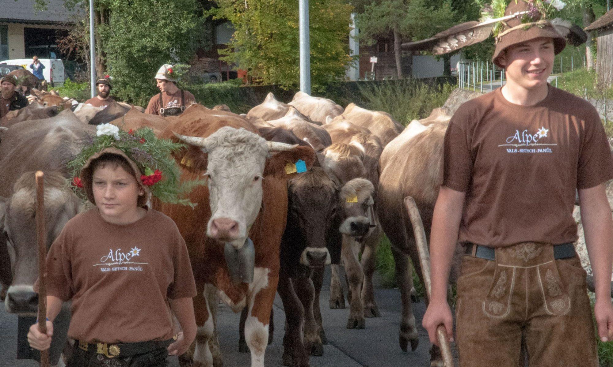 Agrargemeinschaft Nenzing