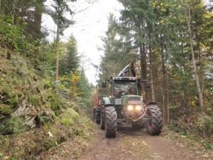 Holztransport (2)
