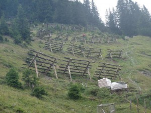 SWP Böschis (1)