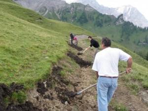 Setsch Viehtriebweg Begrünung (5)
