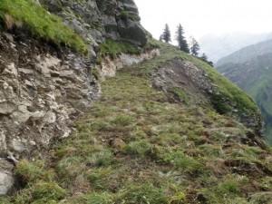 Vermales Viehtriebweg (2)