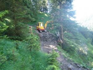 Viehtriebweg Alpila (1)