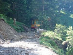 Viehtriebweg Alpila (2)