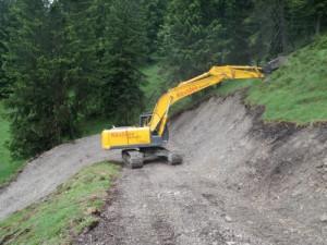 Viehtriebweg Alpila (4)
